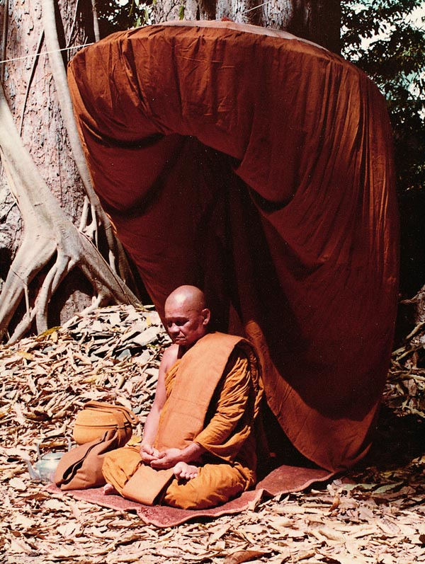 Ajahn Chah in Forest Meditation