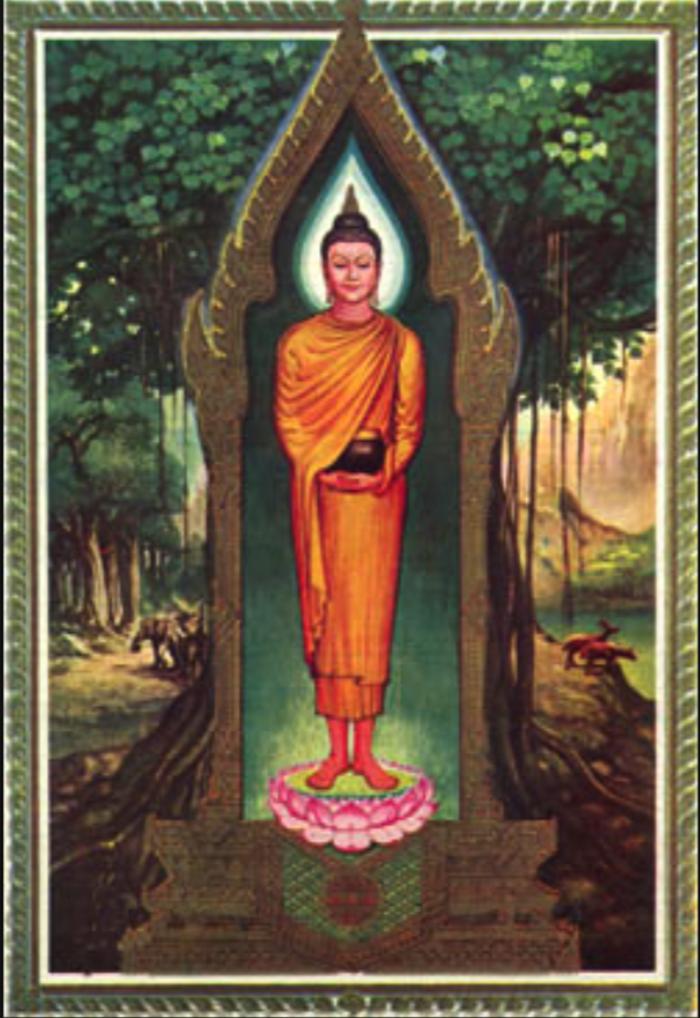 Wednesday Daytime Buddha